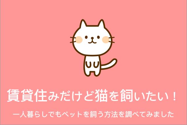 賃貸住みだけど猫を飼いたい! 一人暮らしでもペットを飼う方法を調べてみました
